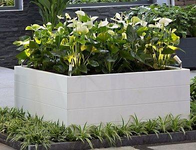 De ideale bloembakken voor elke plek in en rondom je huis