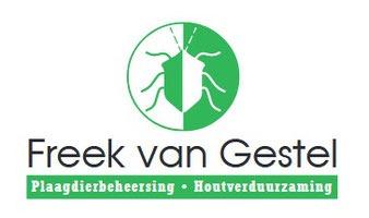 Wespenbestrijding Tilburg adviseert: voorkom wespen steken